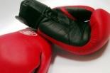 Seminarium bokserskie w Piasecznie