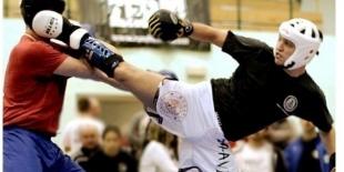 VI Mazovia Cup International 2012 - międzynarodowy turniej sztuk walki