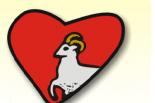 Podsumowanie akcji charytatywnych w Gminie Piaseczno