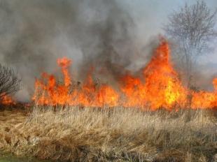 NIE - dla wypalania traw na Mazowszu!