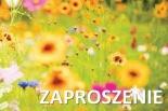 Inauguracja Klubu Klasy Kobiet w Piasecznie