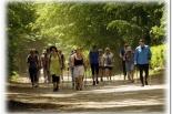 Bezpłatne Letnie Marsze Nordic Walking