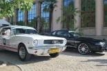 MUSTANG RACE 2013 - Międzynarodowy Rajd Mustangów