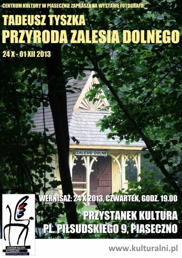 Przyroda Zalesia Dolnego w obiektywie Tyszki