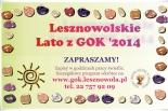 AKCJA LATO 2014 w Gminie Lesznowola