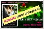 Jesień pachnąca poziomkami ... konkurs z Agnieszką Walczak-Chojecką ROZSTRZYGNIĘTY