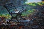 JESIEŃ ZIMĄ - pokonkursowa wystawa malarstwa w Mysiadle