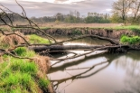 Rzeka Jeziorka i okolice - wystawa fotografii w Piasecznie