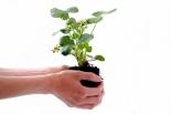 Weź udział w kampanii Ekoodpowiedzialni i dbaj o środowisko!