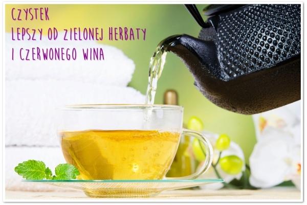 CZYSTEK lepszy od zielonej herbaty i czerwonego wina