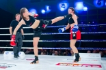 6 gala DSF Kickboxing Challenge - fotorelacja