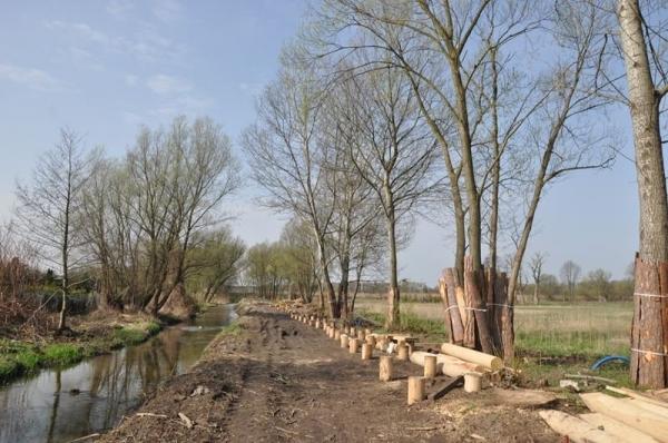 Drewniane podesty połączą mostek z alejką spacerową w Tarczynie