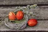 Kiermasz Wielkanocny w Złotokłosie