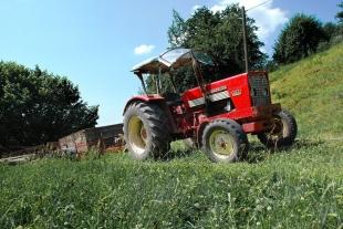 Co zrobić w sytuacji zaistnienia szkody w uprawach rolnych? Jakie są procedury postępowania?