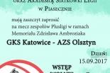 Wielka siatkówka w Piasecznie