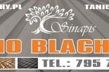 TANIO BLACHY TRAPEZOWE-BLACHODACHÓWKI-CERAMIKA