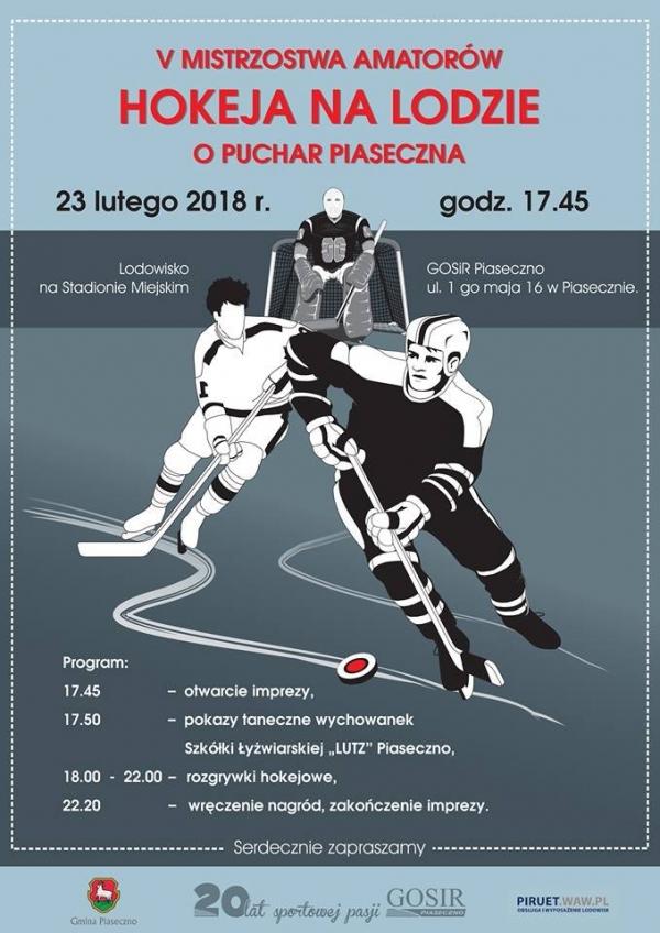 Rozgrywki hokeja na lodzie
