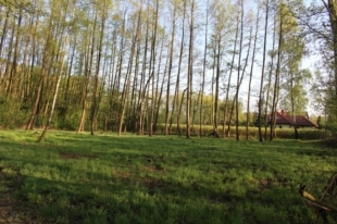 Działki Henryków-Urocze 5500m2