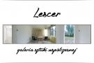 Lescer - nowa galeria sztuki współczesnej w Zalesiu Górnym