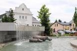 Hipopotamy zamieszkały na Skwerze Kisiela