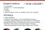Piaseczyńskie rzeźby Józefa Wilkonia - konkurs
