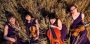 Beafane – Muzyka na Skwerze