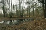 Uporządkowanie terenu pod Park Redutowa – konsultacje