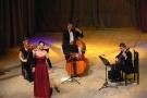 Koncert noworoczny z muzyką klasyczną
