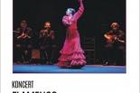 Koncert flamenco w Piasecznie