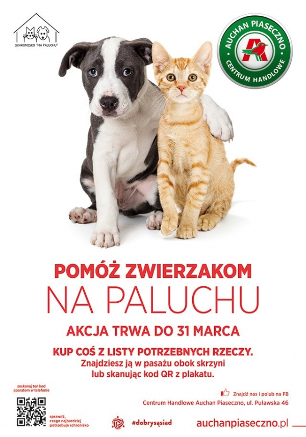 Weź udział w zbiórce karmy i akcesoriów dla potrzebujących zwierzaków. Pomóż psom i kotom na Paluchu!