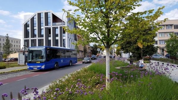 Zmiany w kursowaniu linii autobusowych L23, L24 i L25 po zakończeniu przebudowy ulicy Księcia Janusza I Starego w Piasecznie